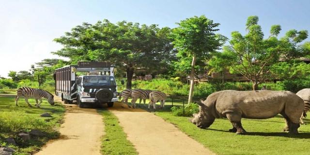 印度尼西亚巴厘岛野生动物园门票>