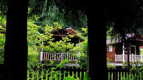 森林小木屋