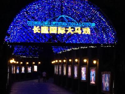 门票名称: 【场次1】野生动物园 广州长隆国际大马戏平日联票>
