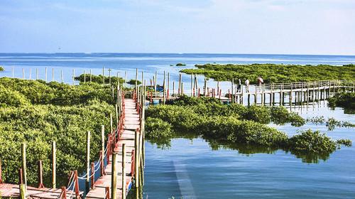北海银滩-金海湾红树林-涠洲岛双飞5日游>漫步唯美海滩,住浪漫涠洲岛