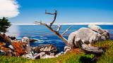 17里湾风景线1