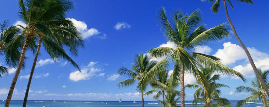【2019】夏威夷县v攻略攻略_夏威夷县自助游攻山移五开攻略图片