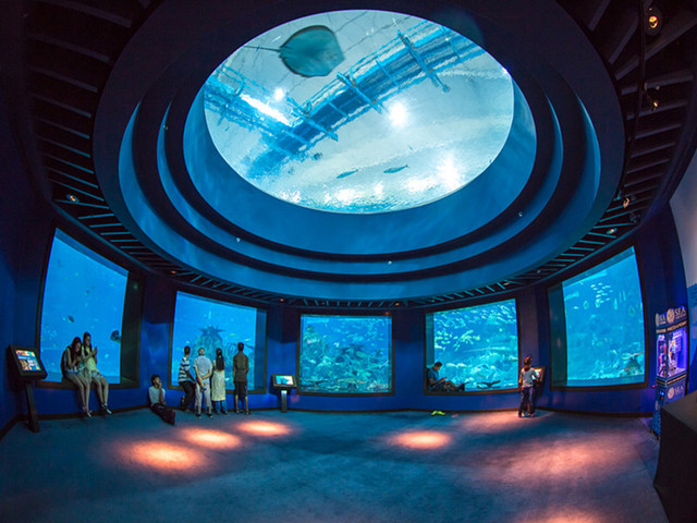 【酒店接送】<新加坡圣淘沙岛9大项目玩个够>(S.E.A海洋馆+缆车+斜坡滑车+摩天塔+时光之翼等)