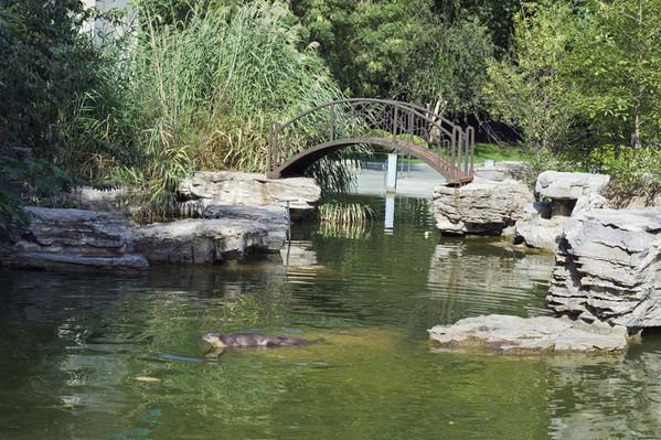 温馨提示: 1、凡持有优惠门票或享受免费入园待遇的游客,参观园中园时请另行购票。 2、平时去北京动物园的人很多,节假日人就更多了,除了挤之外,动物园里的味道也不是很好闻的。所以,如果要去动物园,最好选在淡季,天气凉爽的时候。