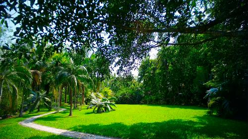 一单一团,植物园,原始森林公园,万达主题陆乐园,曼听公园,告别城市的
