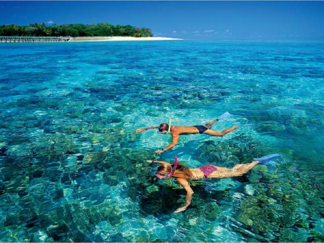 【MW度假村】<沙巴美人鱼岛 二次浮潜+中文导游+风味午餐一日游>可选深潜