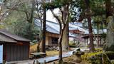 奈良神鹿公园的#旅图换旅费# #情人节摄影展# #魅春节#