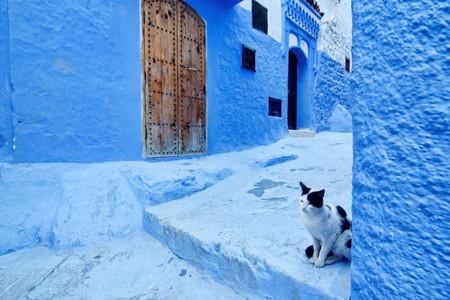 [國慶]<摩洛哥11日游>不超25人團,烤羊宴/大西洋海景餐廳海鮮餐/網紅咖啡館,沙漠特色酒店/菲斯升級5星,越野車前往沙漠腹地