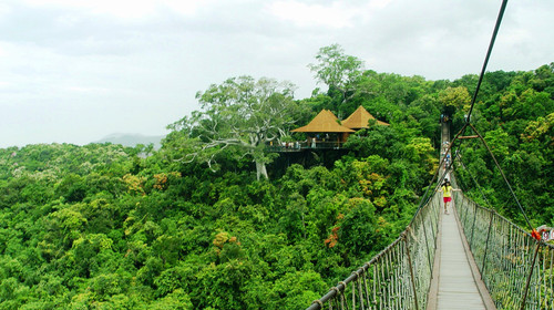 天堂森林公园图片