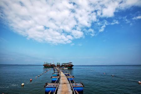 [春节]<惠州巽寮湾2日游>2千多人出游、住海公园酒店海景房、楼下就是沙滩、周边游玩丰富、是你选择的不二之选