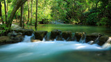 水上森林2