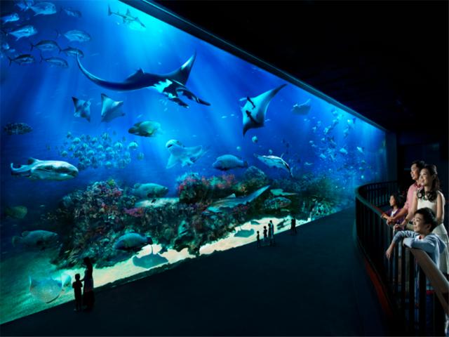 【人气精选】新加坡市区鱼尾狮公园-滨海湾花园-名胜世界S.E.A海洋馆一日游【中文接送】