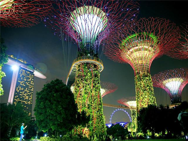 【缤纷狮城】新加坡-鱼尾狮公园-圣安德烈教堂-小印度-滨海湾花园一日游