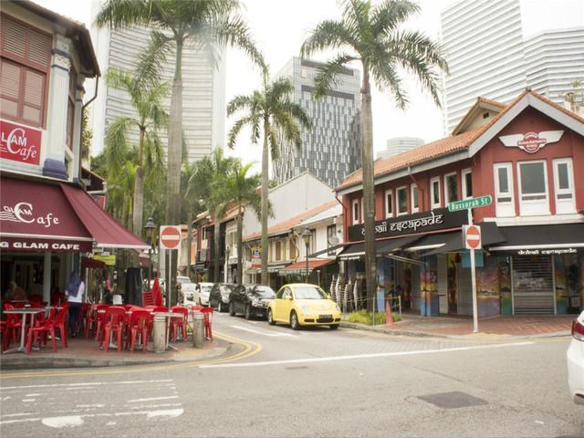 【畅销热卖】新加坡市区-乌节路-新加坡夜间动物园包车一日游