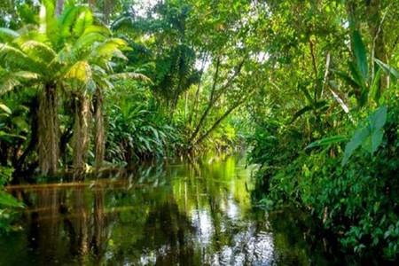 [国庆]<厄瓜多尔基多-安地斯山-亚马逊丛林7日游>2人起发团,火山遗迹,丛林探险,英文导游,接送机服务(当地参团)