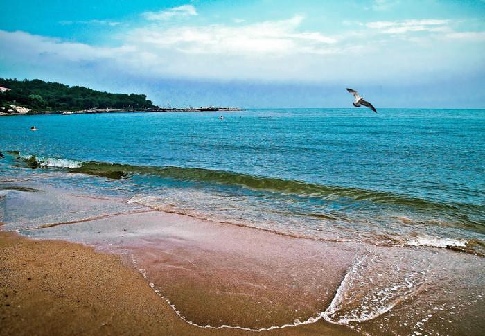 5公里的海岸线上,沙滩和礁石,相互交错;海湾和岬角,依次排开.