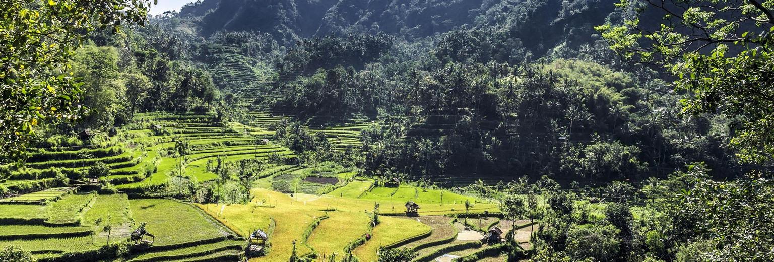 巴厘岛 民丹岛 雅加达 龙目岛 万隆 巴淡岛 纳凸纳拉奈 巴都贝萨尔