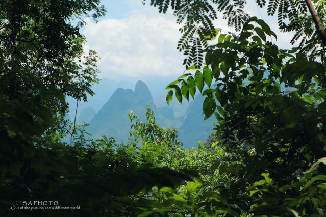桂林|寻找徐悲鸿眼中最美的风景