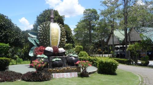 [春节] 泰国曼谷-芭提雅-沙美岛机票 当地5晚6日游>含