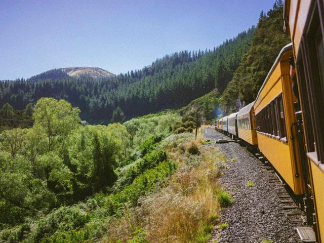 <泰伊里峽谷火車票>(但尼丁至米德爾馬契往返)
