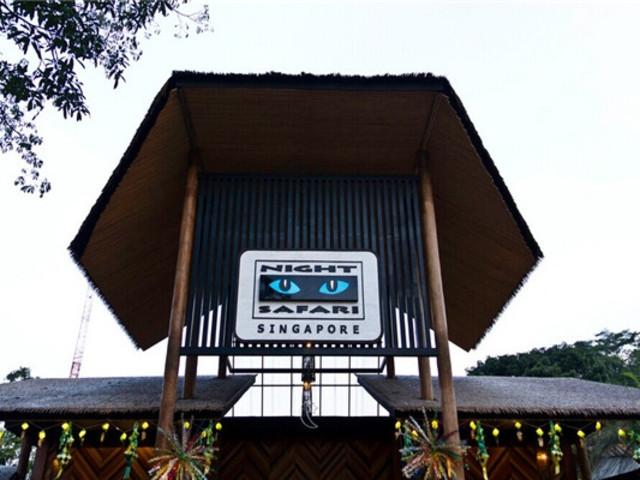 <新加坡夜间动物园门票 游园小火车 英文导览>