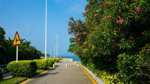 厦门-鼓浪屿3日半自助游