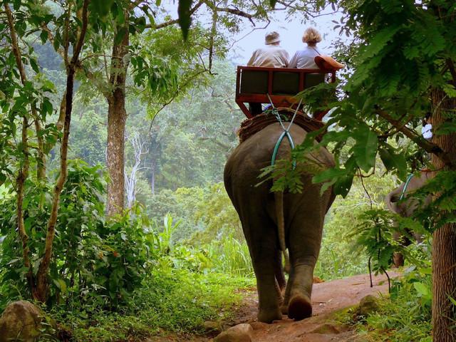 <泰国普吉岛礼佛精品2日游>皮皮岛鸡蛋岛出海,大佛骑大象,ATV沙滩车
