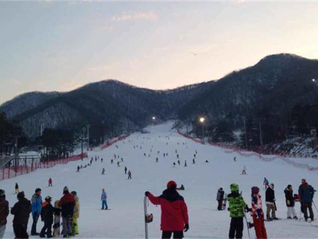 【个签团签韩国滑雪】<韩国京畿道芝山森林滑雪场滑雪一日游>中文滑雪教练,首尔光化门往返,1人起订,纯玩无购物