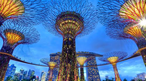<新加坡4晚5日游>纯玩无购物 两晚JW万豪或香格里拉酒店 米其林美食 环球影城  河川生态园  滨海湾花园  1天free 含签证/导服费