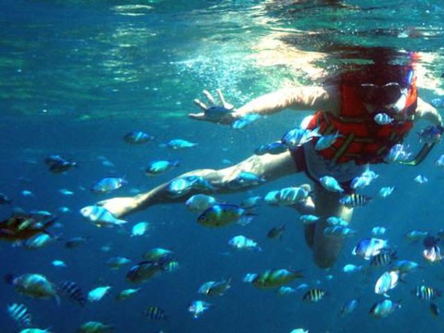 【超值经典】<长滩岛跳岛出海半日游>(海岛游+浮潜+螃蟹大虾BBQ午餐)