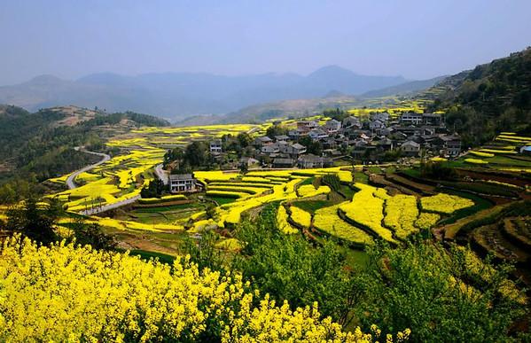 宁海县是一个景色非常优美,风景如画的县城,青山绿水,奇峰怪石,溪流