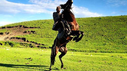 新疆-天池-吐鲁番-赛里木湖-巴音布鲁克-那拉提双飞8日游