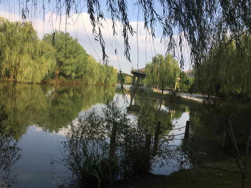 偶然發現的賞桂勝地——江陰瑞豐園