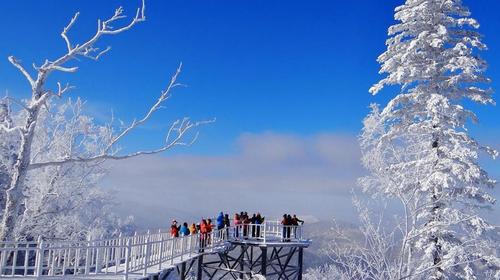 冰雪风景图可爱