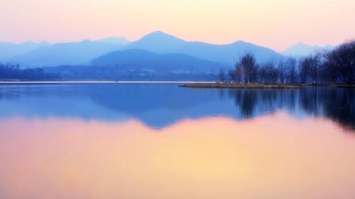 外观断桥风光,雷峰塔,三潭印月,置身于一幅山水画中,漫步苏堤,花港观图片