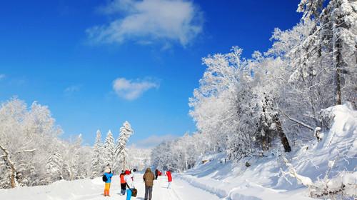 千门万户雪花_千门万户雪花浮,点点无声落瓦沟,沿途可以看到无比蔚蓝的天空,仿佛一