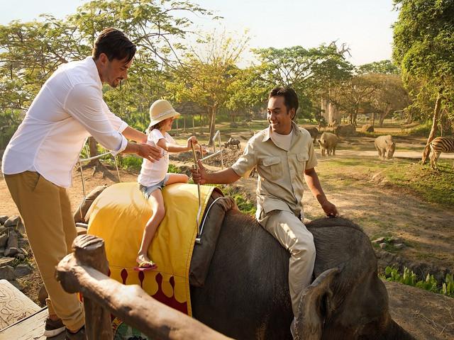 巴厘岛5晚6日或7日游>野生动物园探险之旅,游览车游园,水族馆,大象