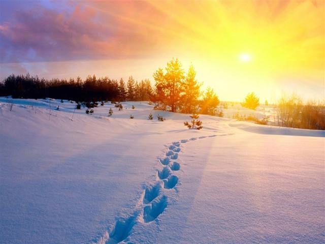 <雪乡-大雪谷2日游>可升级2人间火炕,品东北美食、体验雪地摩托、马拉爬犁、2天1夜尽享雪乡奇幻之旅