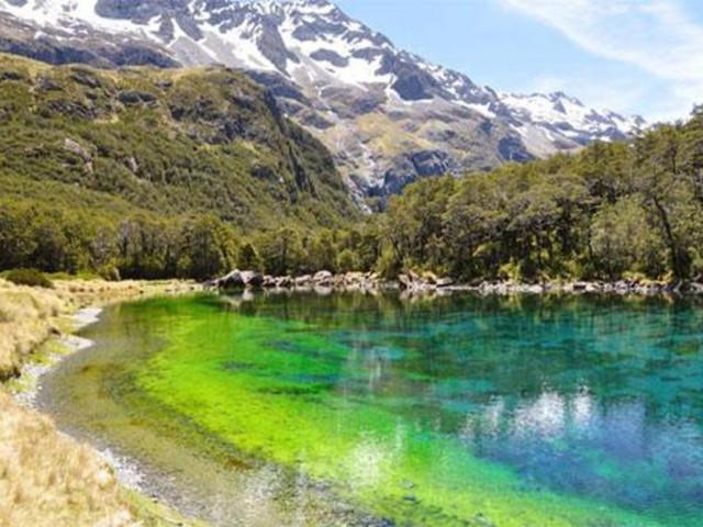 <新西兰 尼尔森蓝湖直升机观光>