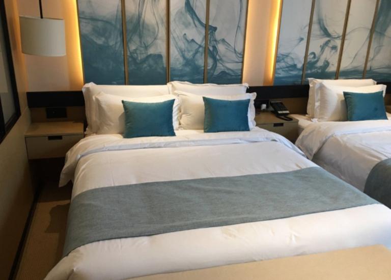 云和夜泊酒店(上海迪士尼野生动物园店)