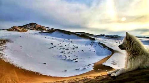 青海湖-茶卡盐湖-石油小镇-敦煌-嘉峪关-张掖双飞8日游
