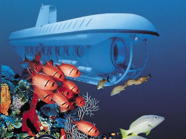 塞班岛人气项目塞班岛自由行美人鱼号潜水艇观光(酒店免费接送+中文讲解)