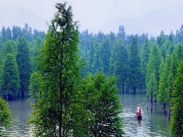 激情玩水-临安湍口氡温泉四季恒温水上乐园-青山湖水图片