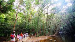 六罗峡谷雨林运动旅游区