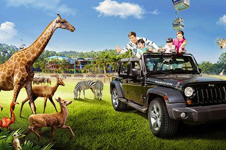 <珠海长隆海洋王国-长隆野生动物园5日游>半私家、纯玩无购物,行程管家全程贴心服务