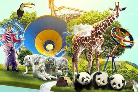 <珠海长隆海洋王国-长隆野生动物园4日游>半私家、纯玩无购物,行程管家全程贴心服务
