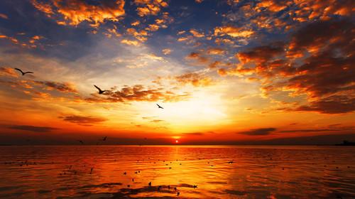 巴厘岛机票+当地5晚7或8日游