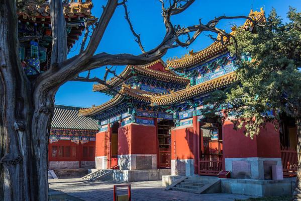 北京到黔南旅游行程安排 可以先选择从北京乘坐火车出发去往贵阳,然后在这个地方转坐火车或者是旅游大巴到达黔南。从北京出发想要去往贵阳,如果是选择坐火车高铁,时间大概在八个小时到十个小时左右。在去这个地方游玩的时候,*站推荐去的景点叫做茂兰。在选择第二站九点的时候推荐去小七孔风景区,那个地方都瀑布特别的壮观。大七孔景区也是很受欢迎的景点。