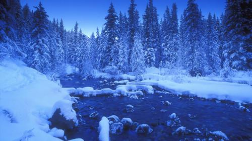 冬日奇景、碧玉国家公园、艾伯塔省、加拿大_334