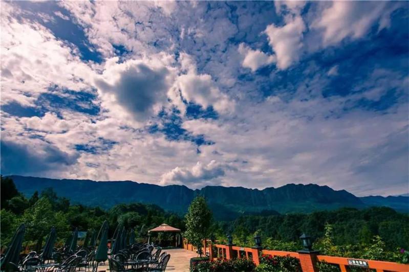 雅安-碧峰峡-野生动物园 风景区-上里古镇纯玩二日游